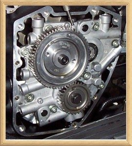 Harley Cam Gear Chain Replacement