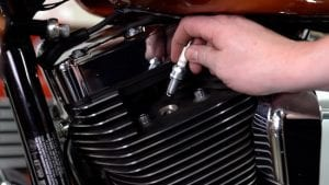 replace the spark plugs on your Harley